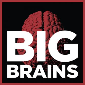 Big Brains logo