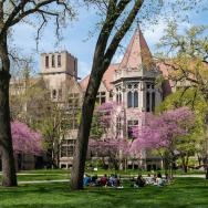 A group of students learn outside on the UChicago campus